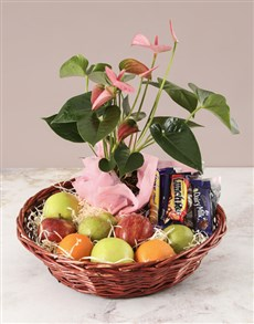 gifts: Pink Anthurium and Munchies Basket!