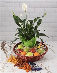gifts: Gourmet Peace Lily Basket!