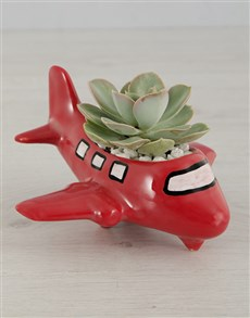 plants: Succulent Ride of your Life!