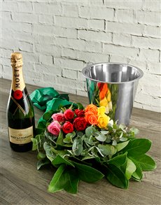 flowers: Mixed Roses, Moet and ice Bucket!