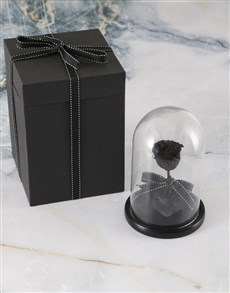 gifts: Black Preserved Rose In Glass Dome!